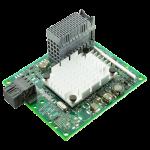 Dual Port 10 Gigabit Ethernet (Lenovo Blade)